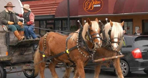 Downtown Arlington Wagon Rides